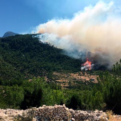 Три пожарных самолета и шесть вертолётов тушат лесной пожар на острове Родос