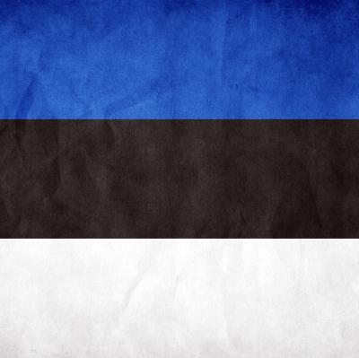 Изъятую из русской семьи девочку в Эстонии вернули родителям