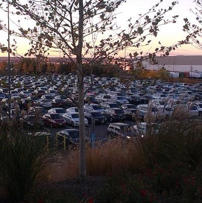В Химках планируют организовать парковочные места для водителей с детьми