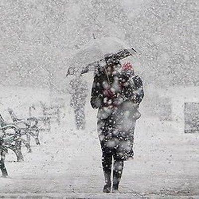 На Московскую область надвигается сильный снегопад