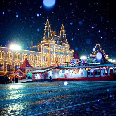9 декабря срубят главную кремлёвскую ель