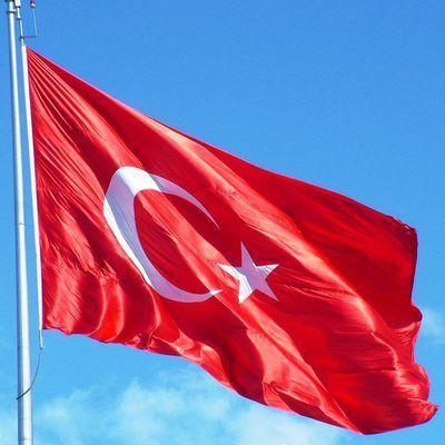 В Турции суд освободил пилота сбитого в марте сирийского МиГ-21