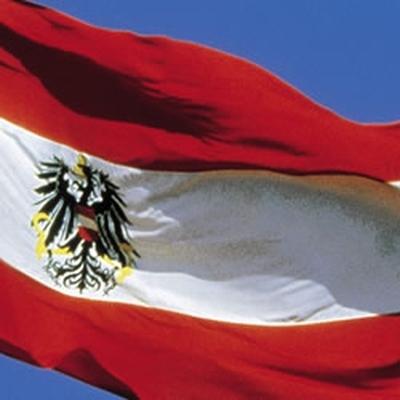 Новое правительство Австрии нацелено на отмену антироссийских санкций