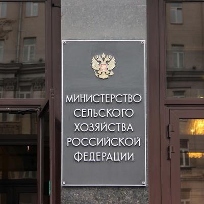 Минсельхоз РФ обсудит поведение Белоруссии и Казахстана на сахарном рынке