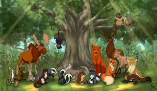 """Кадр из м/ф """"Лесные животные"""" Развивающие мультфильмы"""