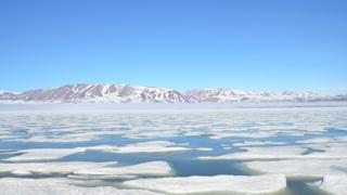 С наступлением арктической весны, льды Северного Ледовитого океана начинают таять, пропуская больше света вглубь воды.