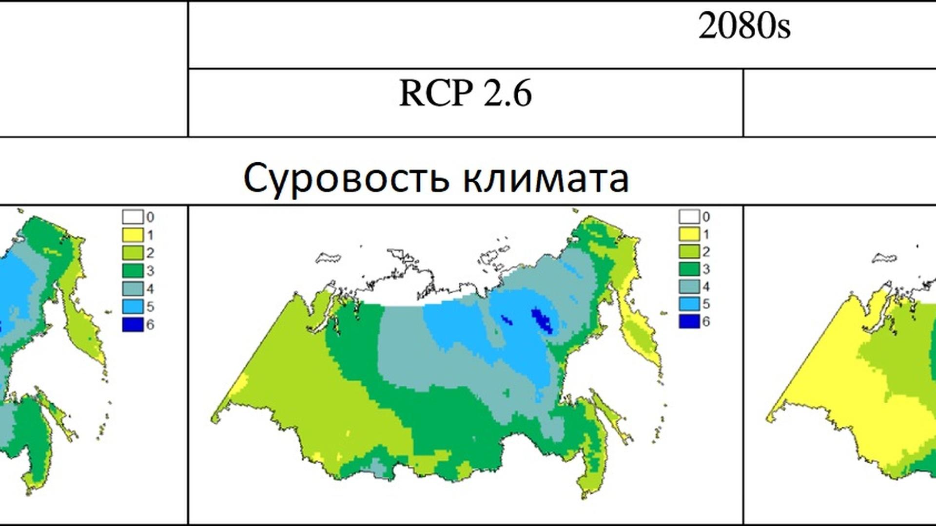 какую площадь россии занимает тайга