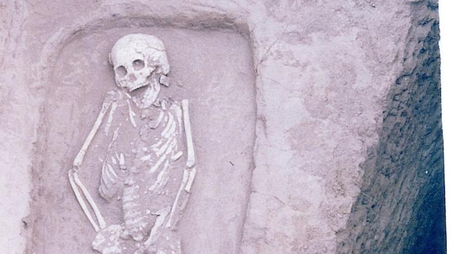 В Китае найдены древние останки «редчайшего» карлика
