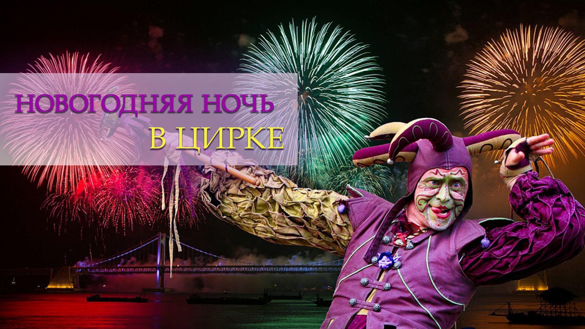 Новогодняя ночь в цирке