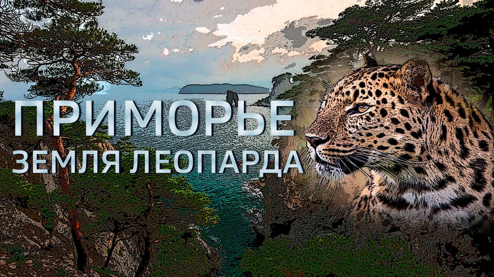 Приморье. Земля леопарда