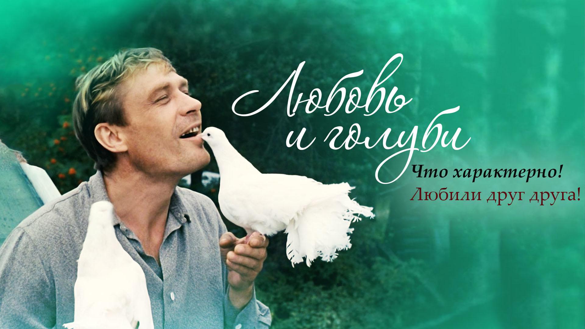 """""""Любовь и голуби"""". Что характерно! Любили друг друга!"""
