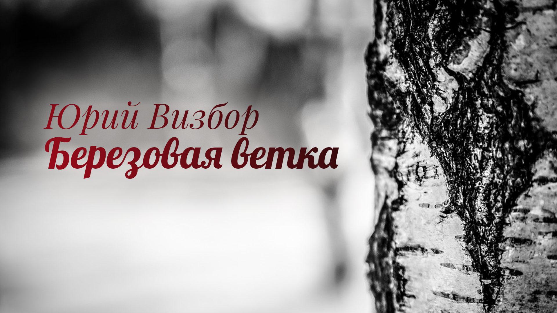 Юрий Визбор. Березовая ветка