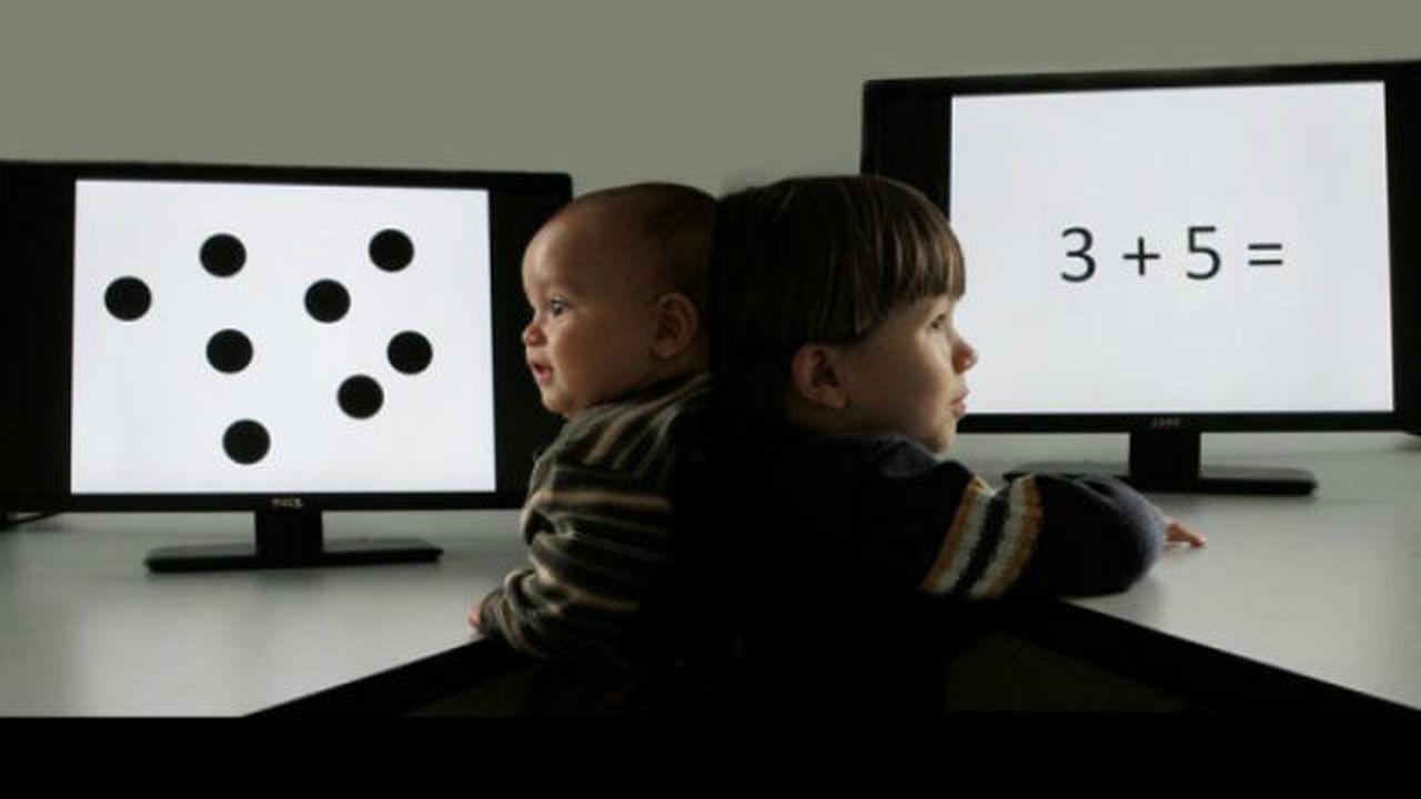 Талант к математике может быть врождённым