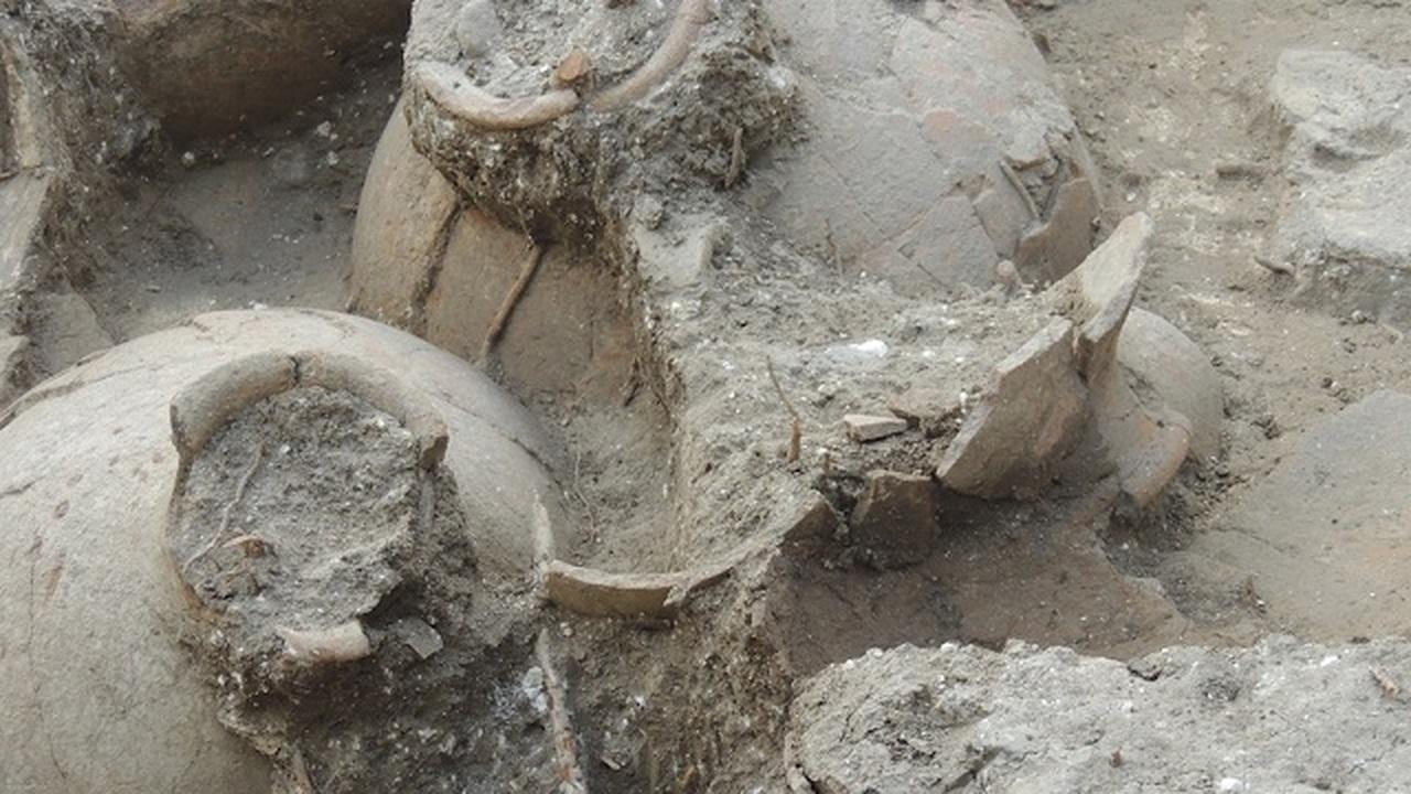 Древнейший винный погреб продолжает раскрывать секреты лучшего вина