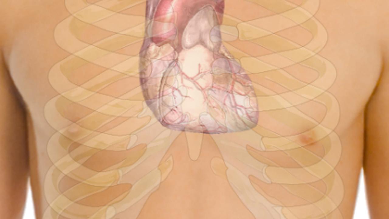 Инъекции пластика уменьшают повреждения сердца после приступа