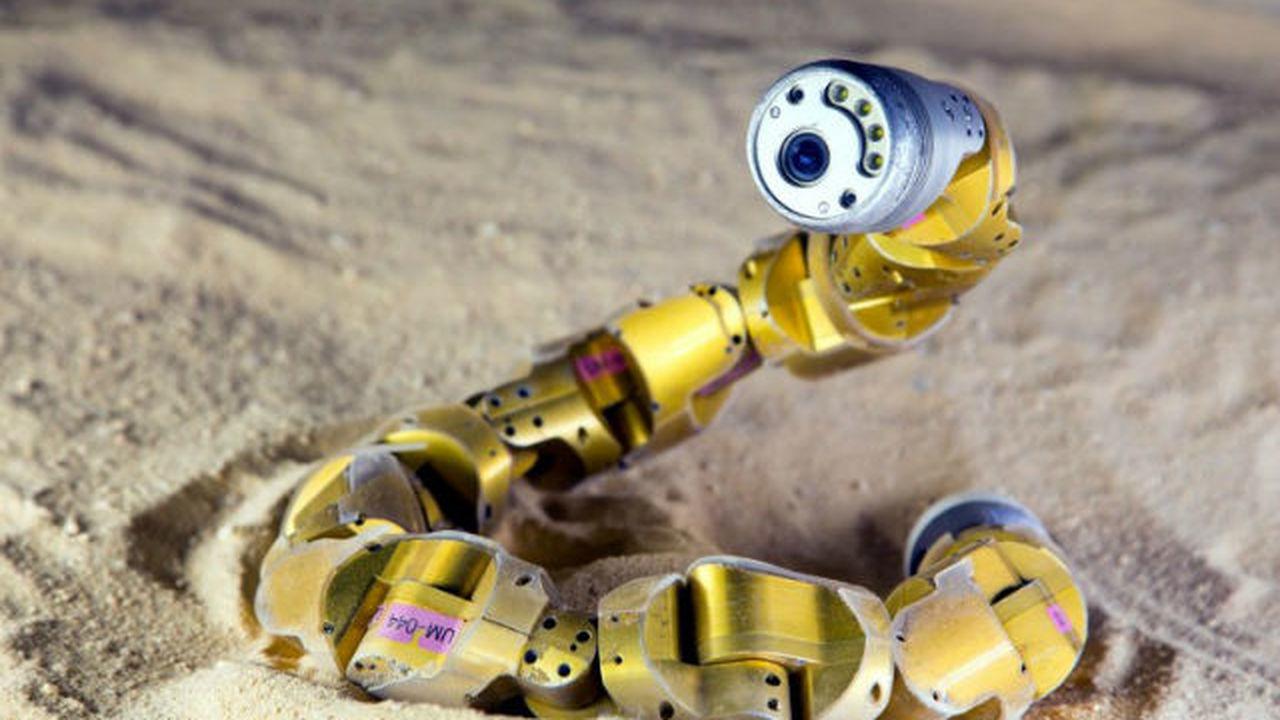 Обновленный робот-змея заберется даже на крутой песчаный склон