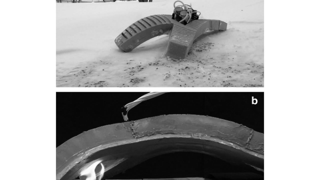 Эластичный робот может пройти сквозь снег и пламя