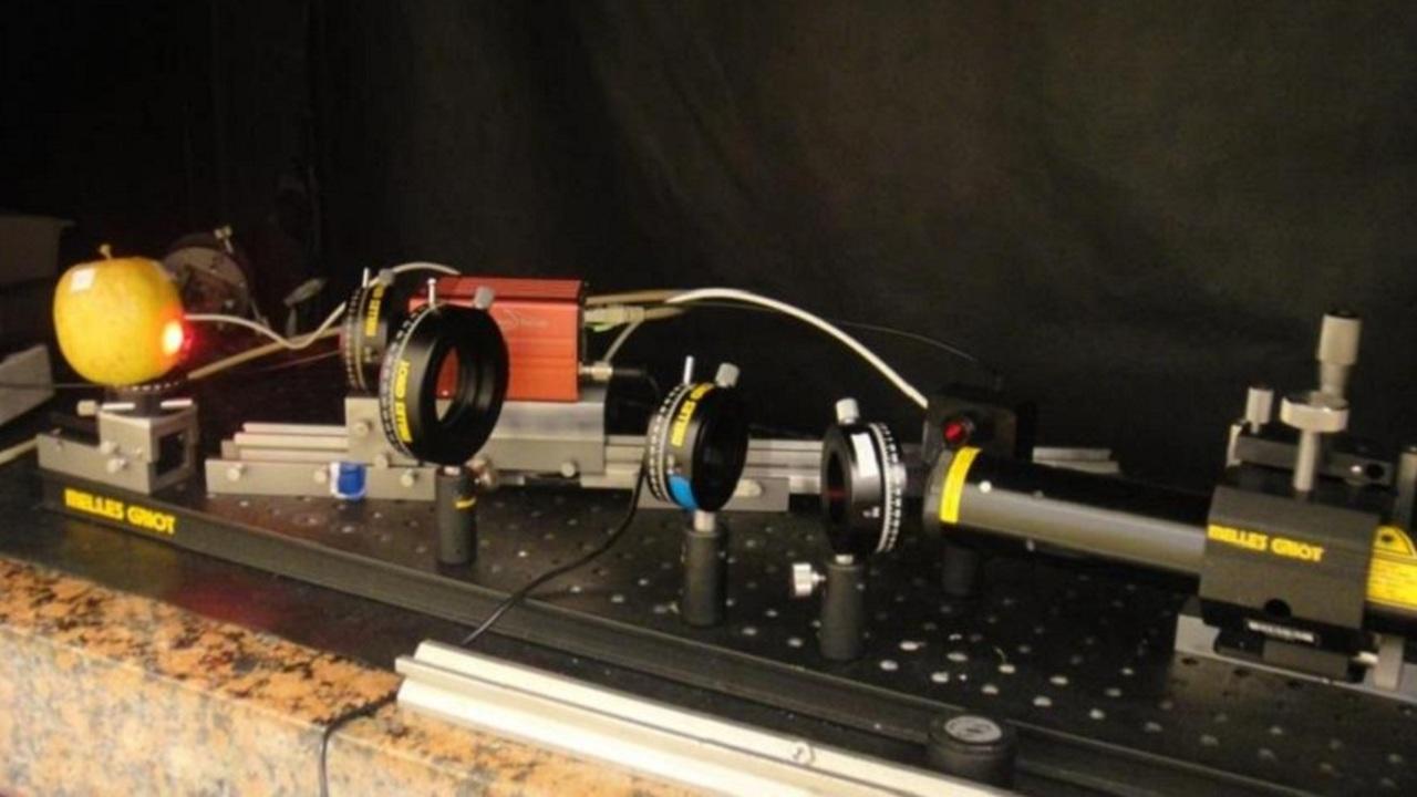 Физики создают детектор зрелости фруктов и овощей
