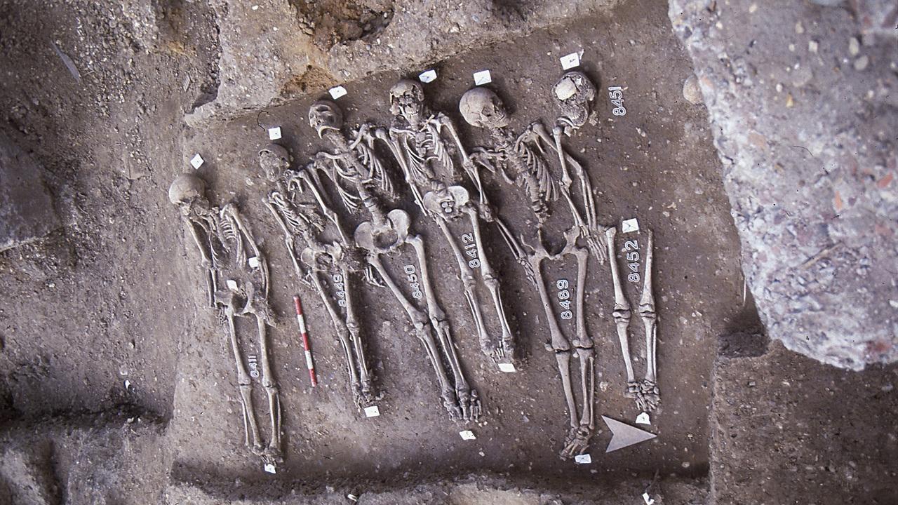 Холод, голод и Чёрная смерть: как климат изменил средневековую Европу