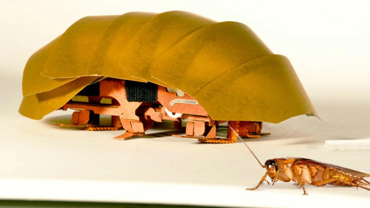Новый робот-таракан с лёгкостью протискивается сквозь щели