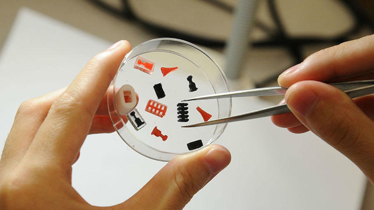 Больше чем два в одном: 3D-печать позволила вложить в одну таблетку сразу несколько лекарств