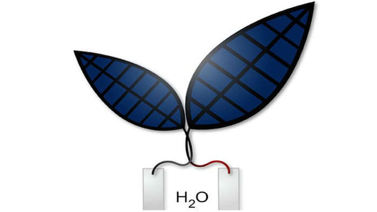В 10 раз эффективнее: бионический лист превращает свет в жидкое топливо