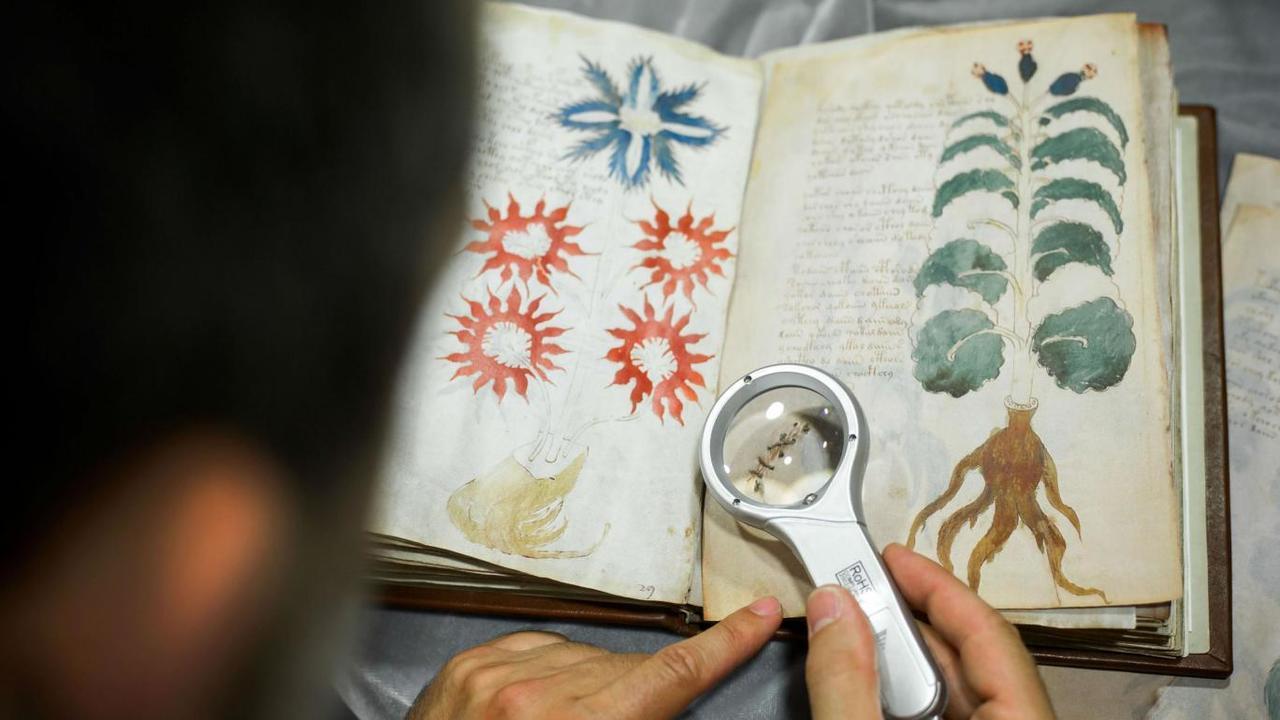 Испанское издательство опубликует копии рукописи Войнича, которую никто не может прочитать