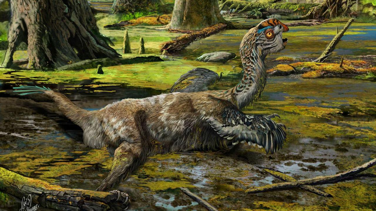 Как мягкие ткани динозавров могут сохраняться десятки миллионов лет? Разгадка найдена