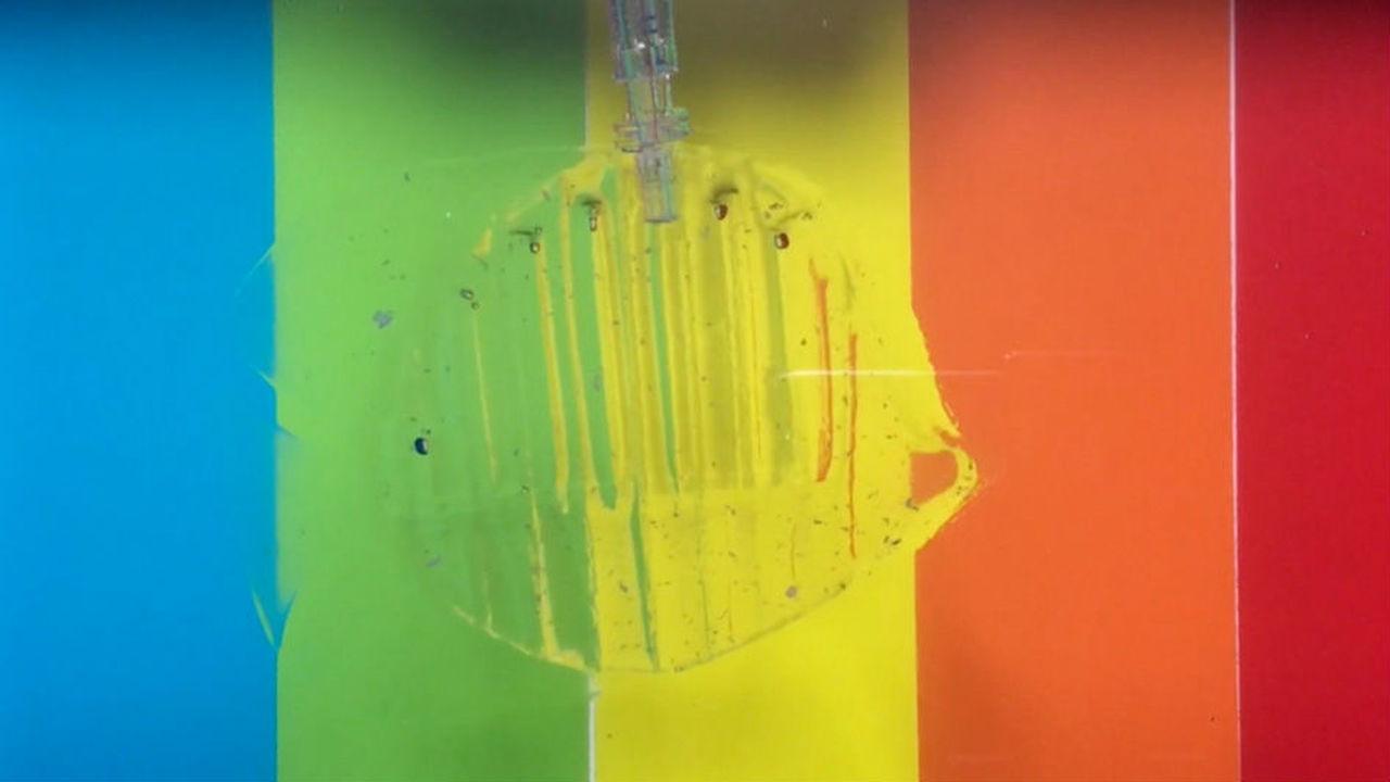 Робот из прозрачного гидрогеля может бережно поймать и отпустить рыбку
