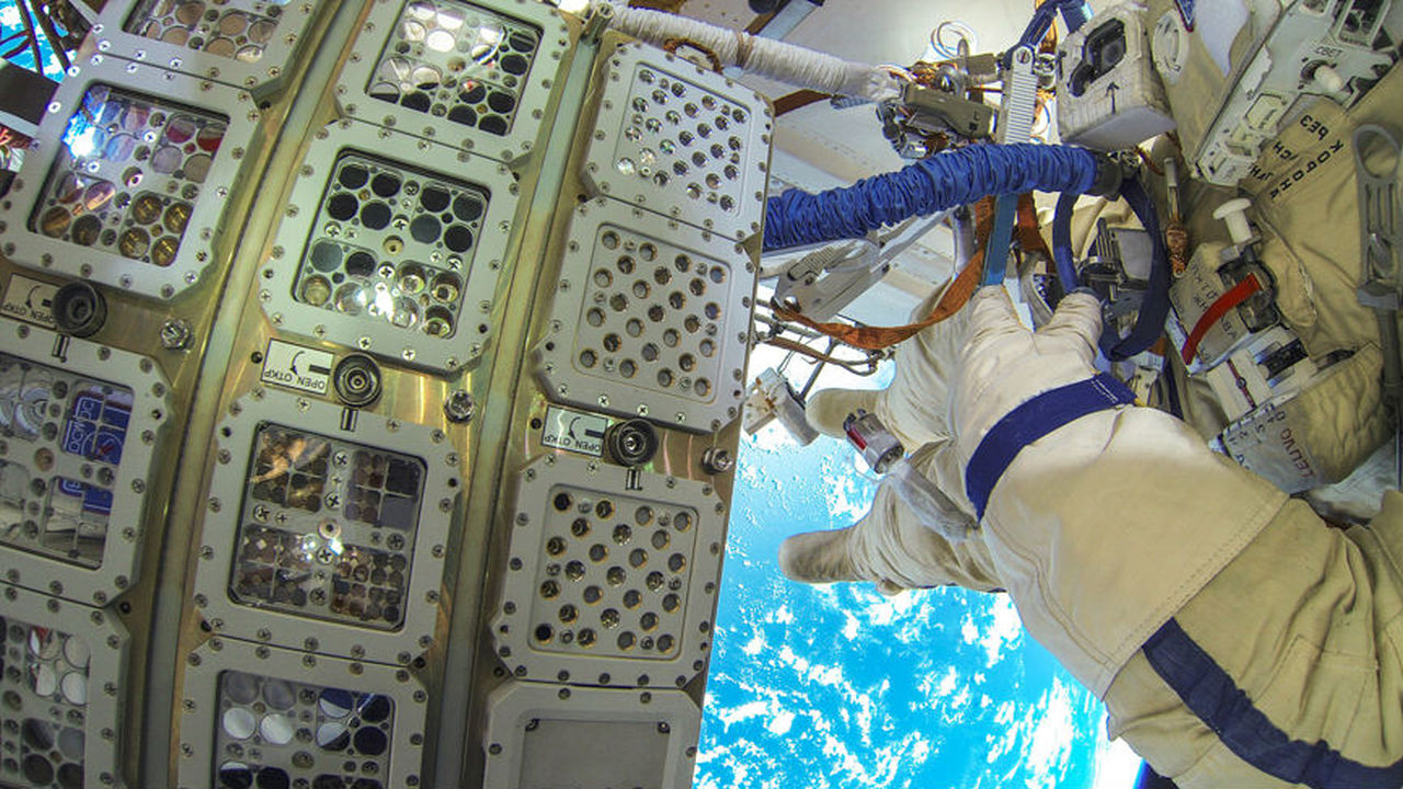 Водоросли выжили после 16 месяцев в открытом космосе