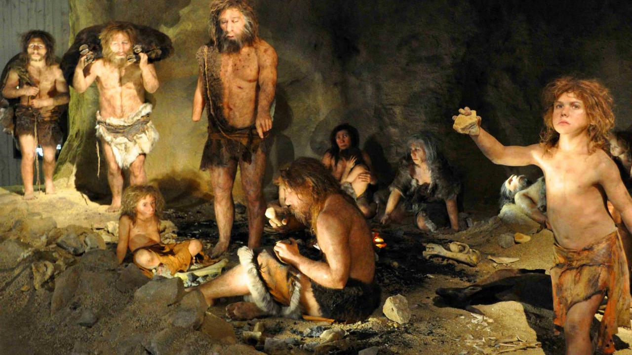 Неандертальцы лечились при помощи доисторических обезболивающих и антибиотиков