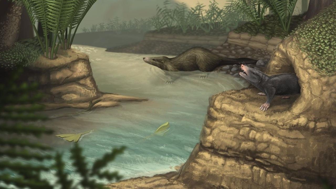 """Млекопитающие """"вышли из сумрака"""" только с вымиранием динозавров"""