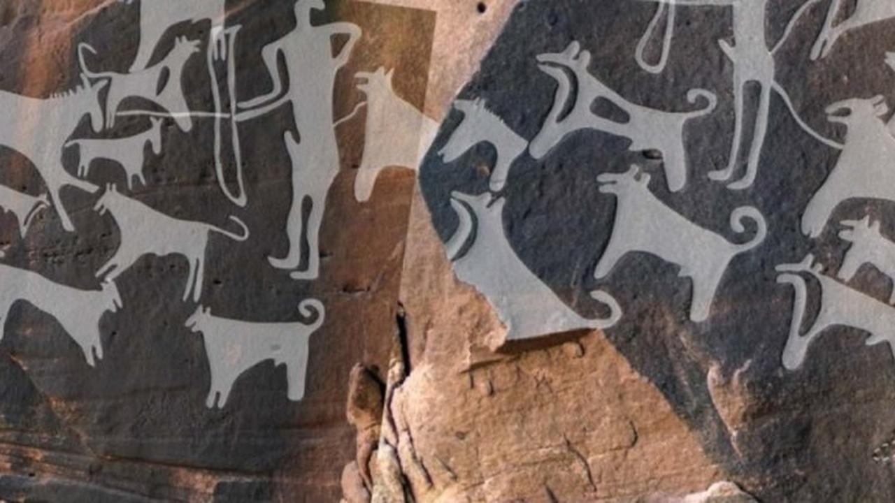 Дружба на века: найдены древнейшие изображения собак и их хозяев