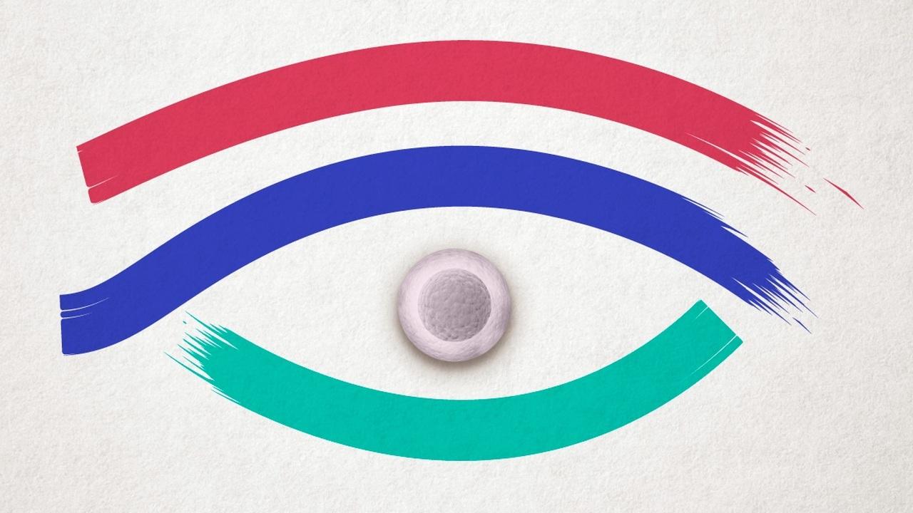"""У российских учёных появился """"третий глаз"""" для наблюдения за стволовыми клетками"""