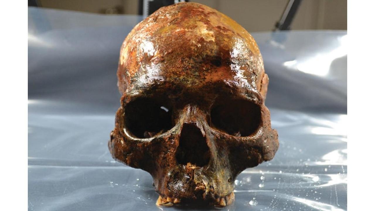 В Швеции найдено странное древнее погребение с насаженными на колья черепами