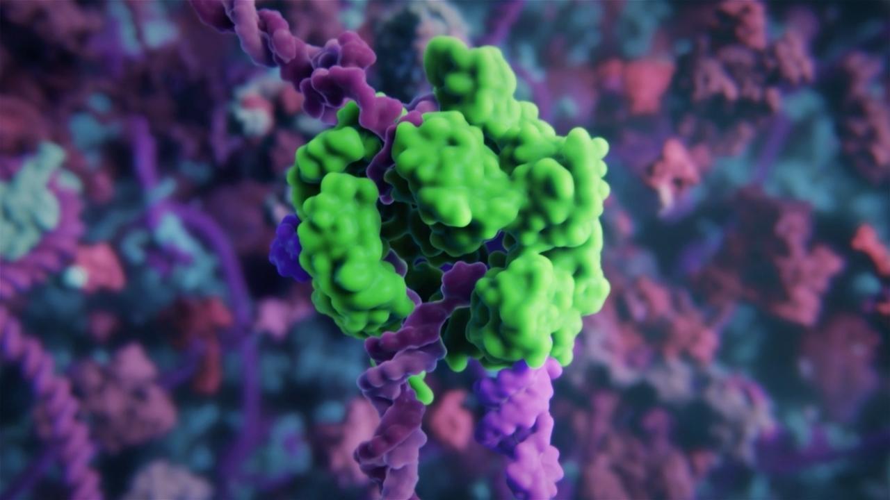 Как работает метод редактирования генома CRISPR: 3D-анимация с реальными молекулярными структурами