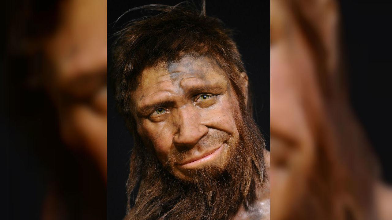 Внезапно: Homo sapiens как минимум дважды скрещивался с денисовцами