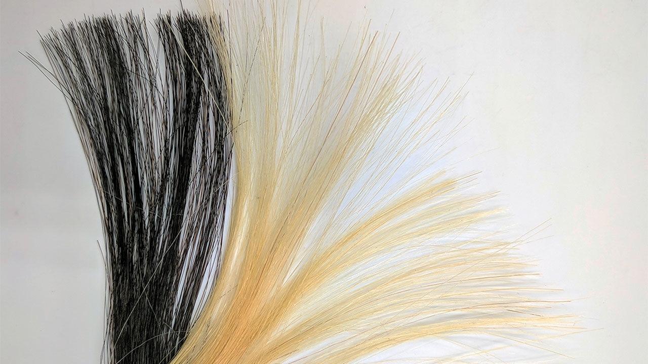 Создана нетоксичная краска для волос на основе графена
