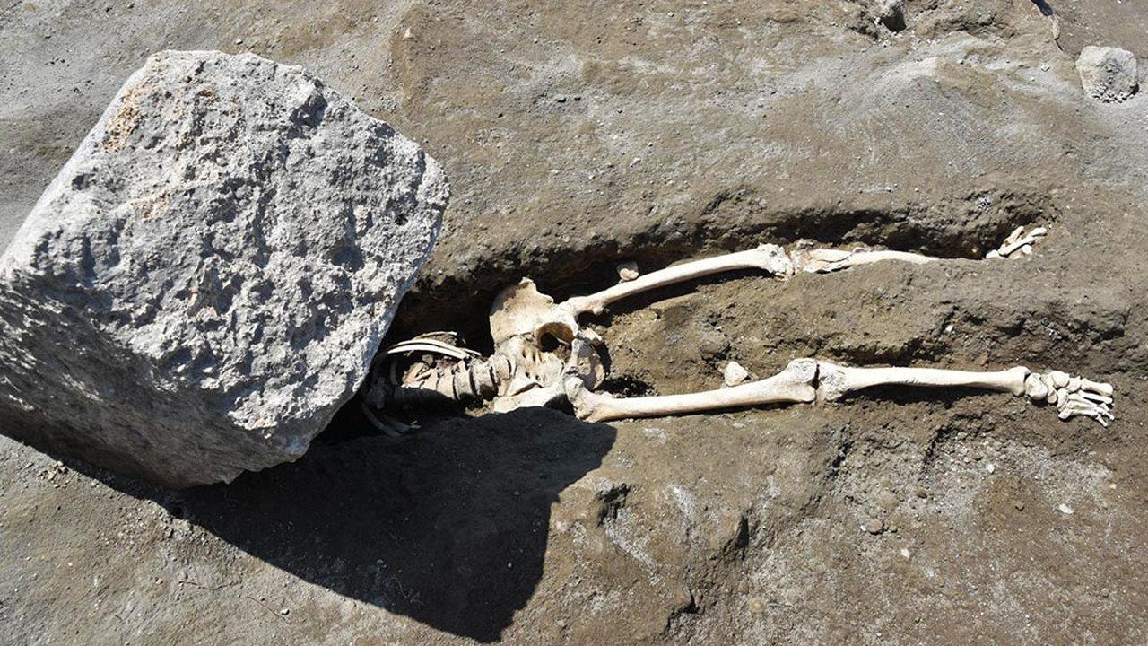 Скорость не имела значения: новые подробности гибели лошадей и хромого мужчины в Помпеях