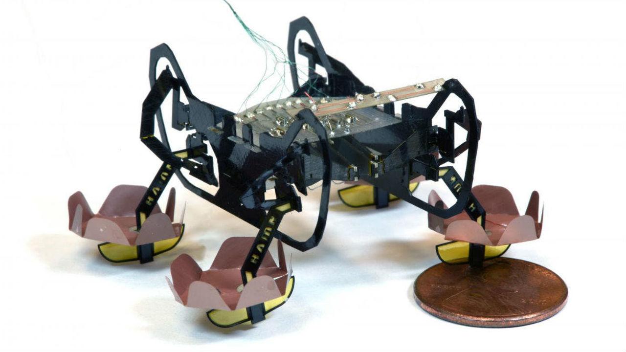 Робот-таракан HAMR научился ходить по воде и под водой