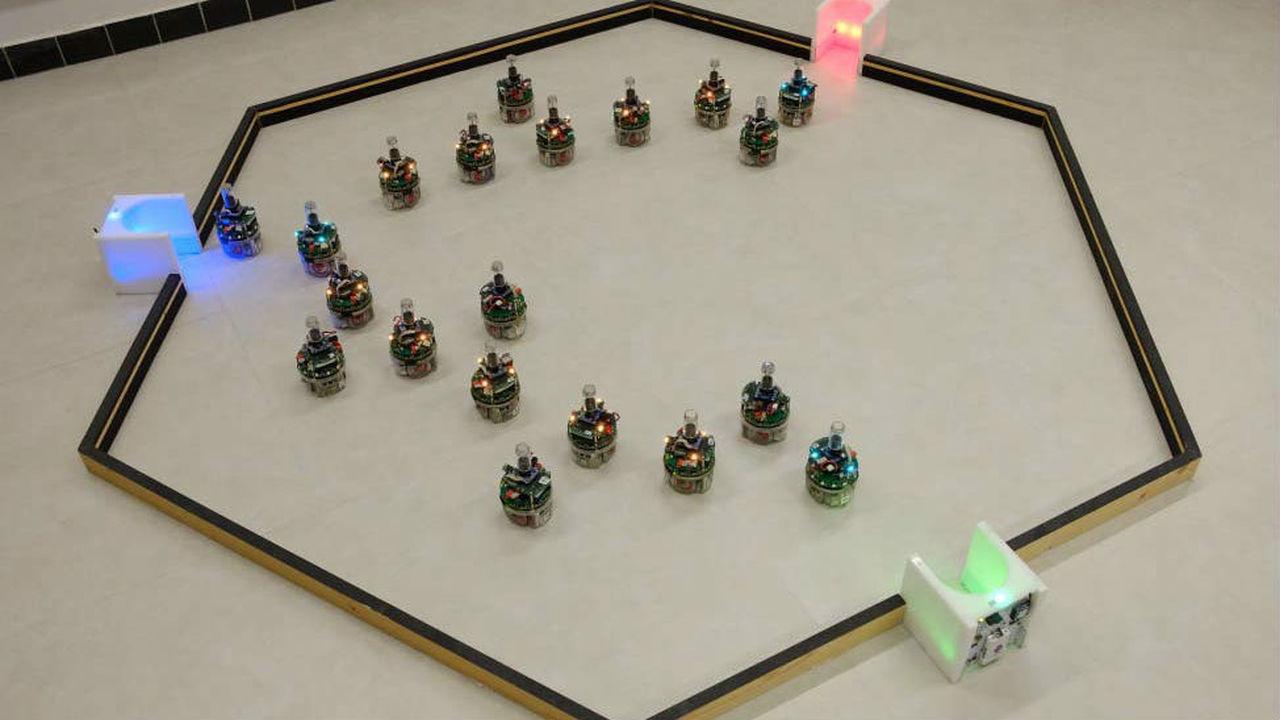 Простых роботов научили решать сложные задачи путём самоорганизации в цепь