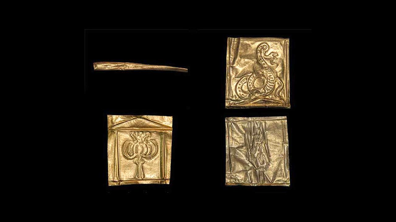 Черный саркофаг и его обитатели: египетские ученые сообщили первые результаты исследований