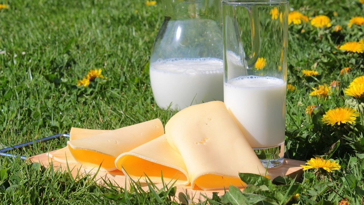 Молочные продукты снижают риск развития сердечно-сосудистых заболеваний