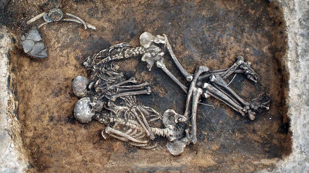 Адрес – Самара, возраст – 3800 лет: расшифрован древнейший геном бубонной чумы