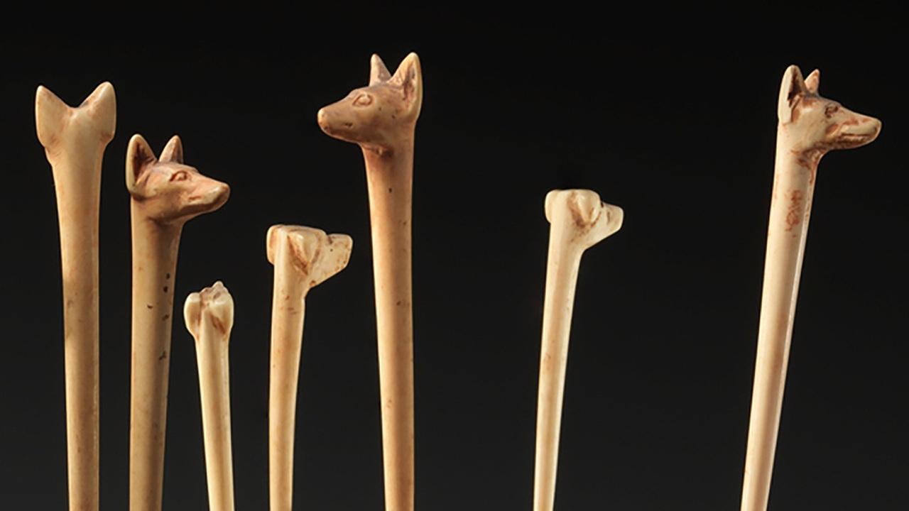 Собаки и шакалы: американец нашел в Азербайджане 4000-летнюю игру