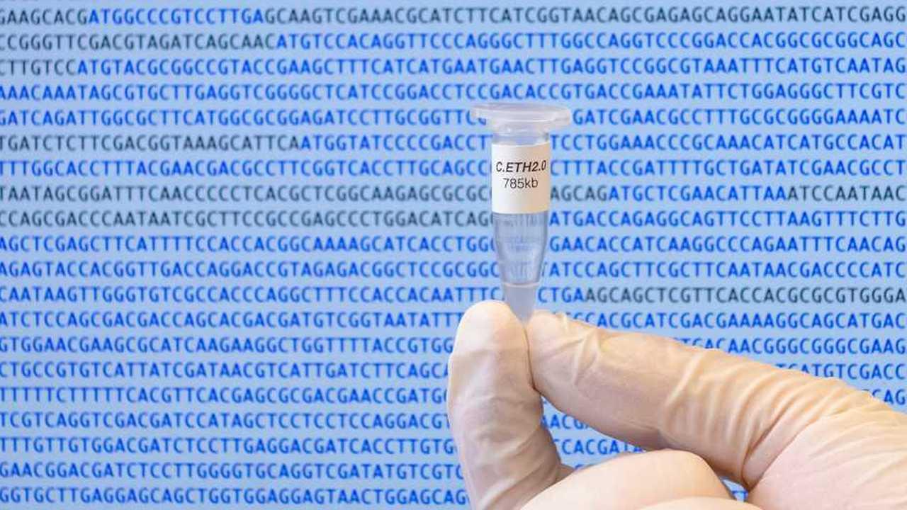 На пути к искусственной жизни: компьютер впервые полностью сгенерировал геном живого организма