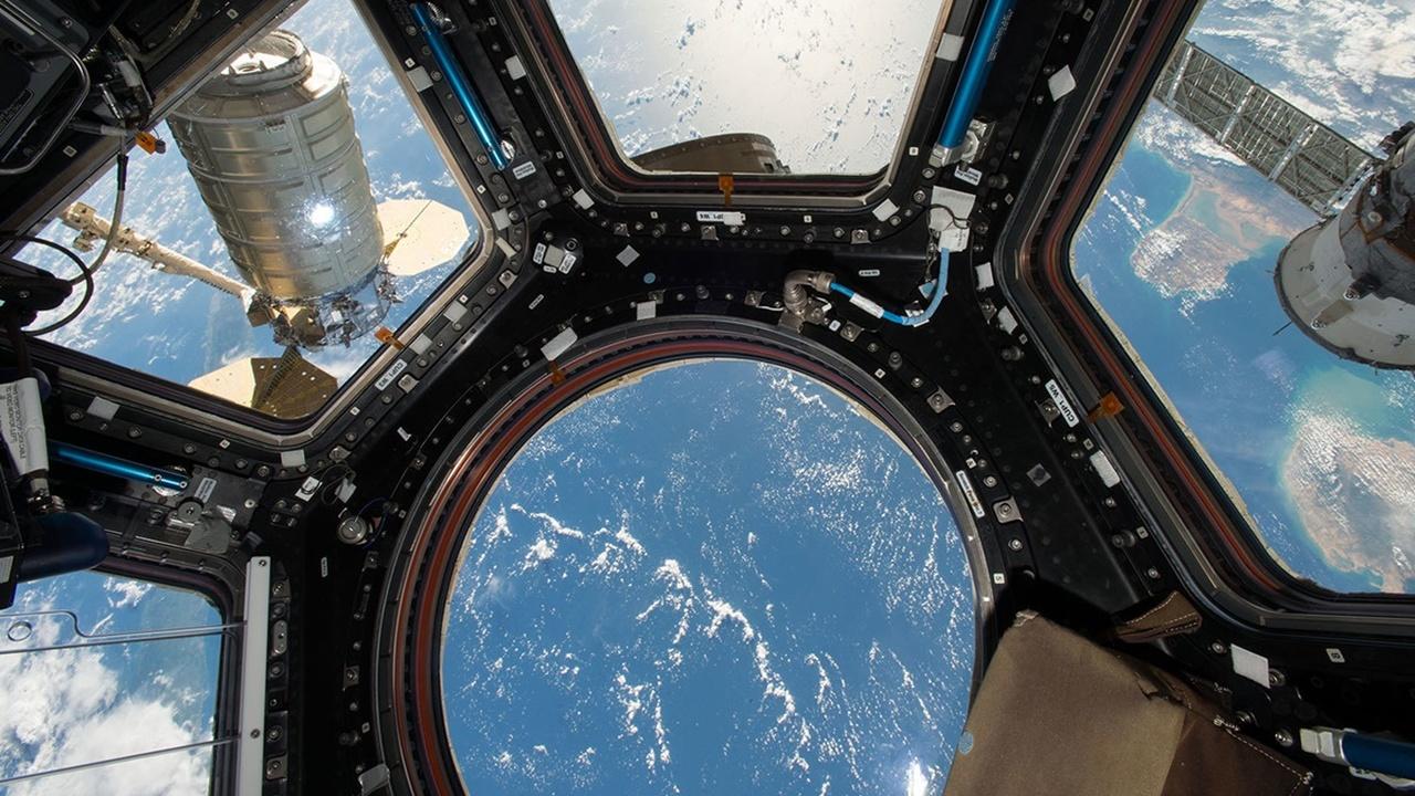 На МКС найдены бактерии, потенциально опасные для экипажей и самой станции