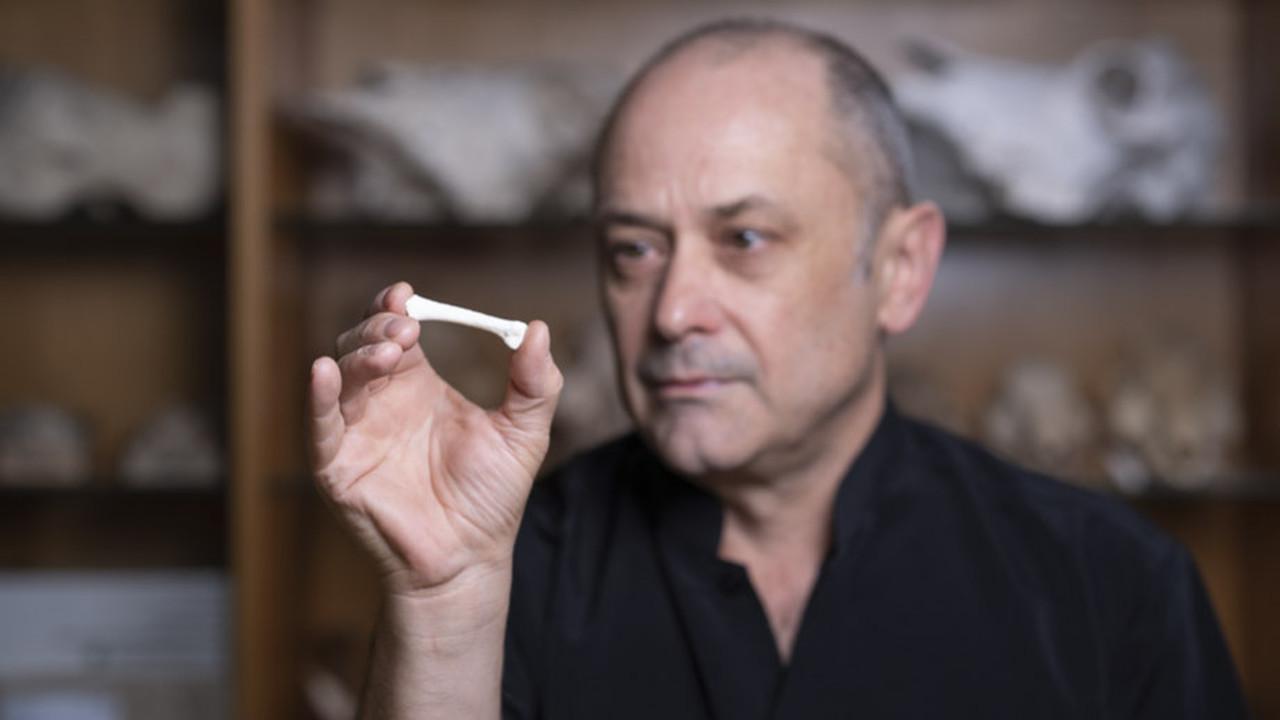 Ещё один Homo: на Филиппинах найдены останки людей нового вида