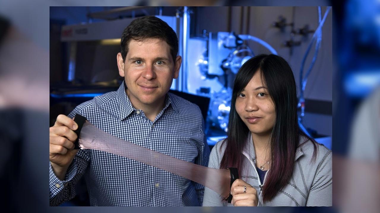 Кожа кальмаров вдохновила учёных на создание адаптивного материала для космических одеял и не только