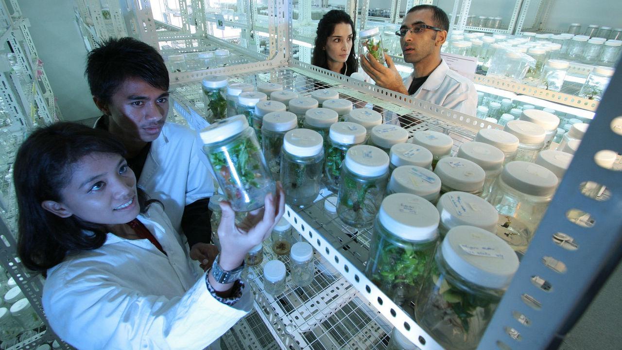 Селфи повышают уровень доверия к учёным